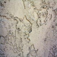 Краски для минеральных поверхостей